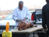 pig_roast_butcher_2